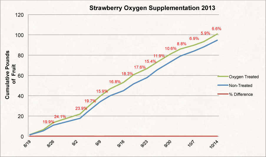 Strawberry Graph