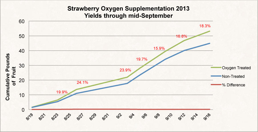 2013 Strawberry Graph